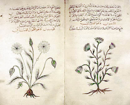 Fil:Arabic herbal medicine guidebook.jpeg